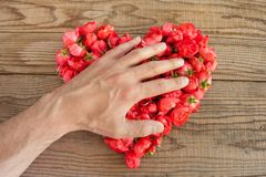 Heart made of red roses in wooden background, covered by an hand. To represent personal feelings royalty free stock photo