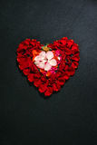 Heart made by rose petals Royalty Free Stock Images