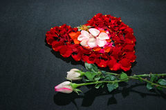 Heart made by rose petals Royalty Free Stock Image