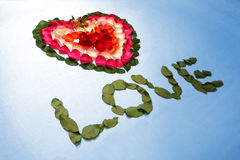 Heart made by rose petals Stock Image