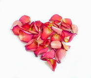 Heart Made of Rose Petals On White. A heart shape made of rose petals on a white background stock images