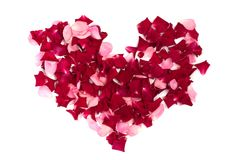 Heart made of roses Royalty Free Stock Photos