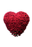 Heart made of roses, isolated. Heart made out of blossomed roses, isolated Stock Image