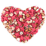 Heart made of sea shells. Stock Photo