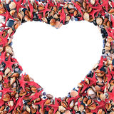 Heart made of sea shells Stock Photo
