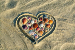 Heart made of sea shells lying on sand Stock Photography