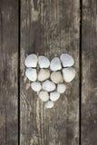 Heart made of sea shells Stock Photo