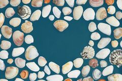 The heart made with the seashells on the dark teal paper background.