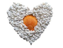 Heart made of seashells lying on sand . Summer vacation concept stock photos