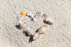 Heart made with shells. Heart shape on sand royalty free stock photos
