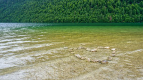 Heart made of stones under a lake. Heart made of stones in a green lake stock images