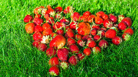 Heart made of strawberries on a green lawn Stock Image