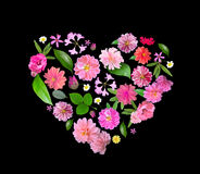 Heart Made from Summer Pink Flowers and Green Leaves Isolated on Royalty Free Stock Photos