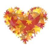 Autumn Heart Stock Photography