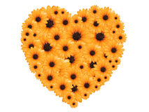 Heart made of yellow flowers Stock Photos