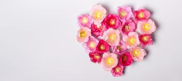 Heart of mallow flowers. Minimalism beauty, mothers Day or Valentines Day concept.  Royalty Free Stock Images