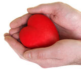 Heart in mans hands royalty free stock photography
