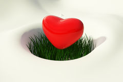 Heart melting snow Royalty Free Stock Photo