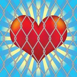 Heart for mesh fence. Stock Photo