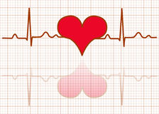 Heart monitor-Vector Stock Photos