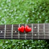 Heart on neck guitars and strings on the grass Royalty Free Stock Photo