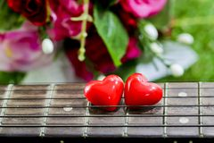 Heart on neck guitars and strings on the grass Royalty Free Stock Image