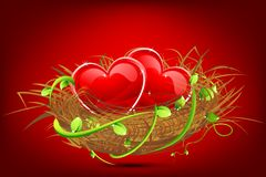 Heart in Nest Stock Photography