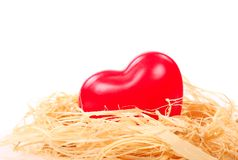 Heart in nest Stock Photos