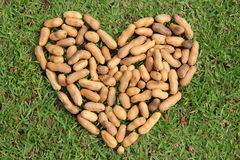 The heart from the nuts. Royalty Free Stock Images