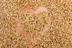 Heart of oat grains, healthy nutrition, symbol of love Stock Photography