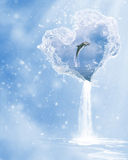 The heart of the ocean. A dolphin jumping in the heart of the ocean Royalty Free Stock Photography