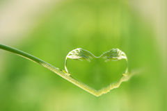 Free Heart Of Nature Stock Photos - 25446913