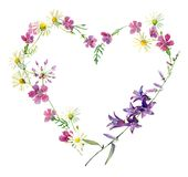 Heart Of Watercolor Wild Forest Flowers Stock Images