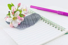 Heart on open notebook with spring blossom flowers Royalty Free Stock Photos