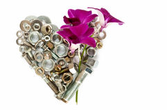 Heart and orchid Stock Image