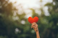 Heart in our little hands. royalty free stock image