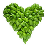 Heart out of basil Stock Photo