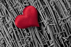 Heart over a barbed wire Royalty Free Stock Images