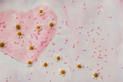 Heart painted with watercolors and fresh chamomile. Scattered pink beads. Concept of love, romance, tenderness Stock Photography