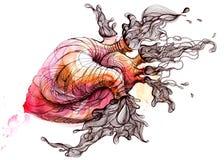 Heart. Painting of heart radiating vitality Royalty Free Stock Image