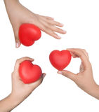 Heart in palms Stock Image