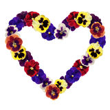Heart of pansy Royalty Free Stock Photos