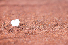Heart paper on cocoa powder Royalty Free Stock Photo