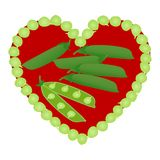 Heart ,pea pods and open peas in pod on white background. stock photo