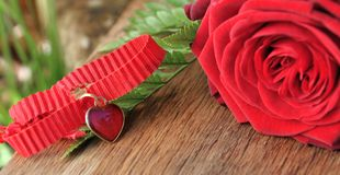 Heart pendant with red roses Royalty Free Stock Images