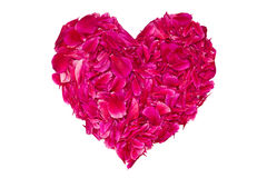 Heart from the petals. Heart of crimson peony petals on a white background Royalty Free Stock Photo