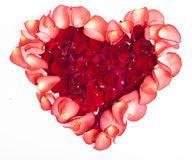 Heart from petals of a red rose Royalty Free Stock Photography