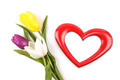Heart photoframe and tulips. Beautiful heart frame and bouquet of tulips isolated on white royalty free stock photos