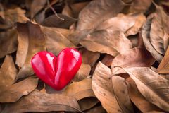 Heart in a pile of leaves.jpg Stock Photography