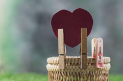 Heart pinch on basket in green grass background Stock Photography